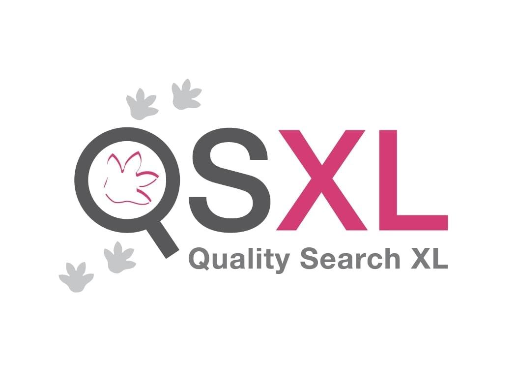 QSXL recruiter logo Ben Drost - logo ontwerp portfolio